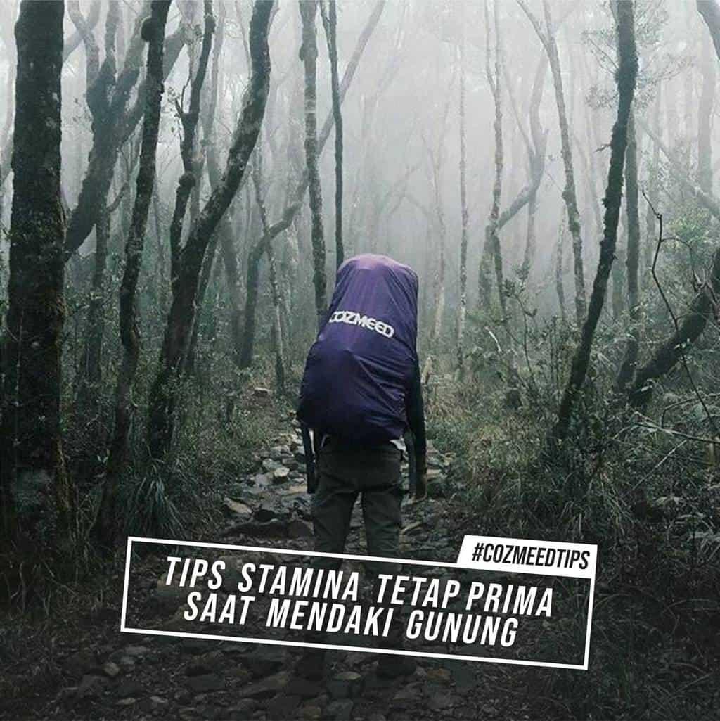 Gambar Tips stamina tetap prima saat mendaki gunung 2